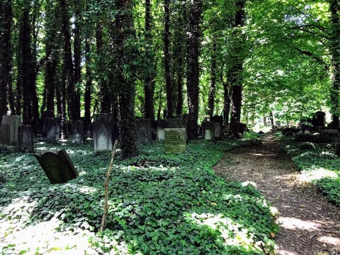Łódź Jewish Cemetery11
