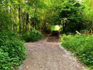 Clayton Vale | Manchester Urban Parks | Local Nature Reserve | East Manchester | The Urban Wanderer | Sarah Irving | UK | Outdoor Blogger | Travel Blogger | Manchester Blogger