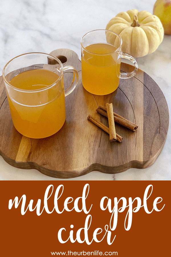 Warm up this winter with some homemade mulled apple cider! Fill your kitchen with fall aromas and get into the holiday spirit.