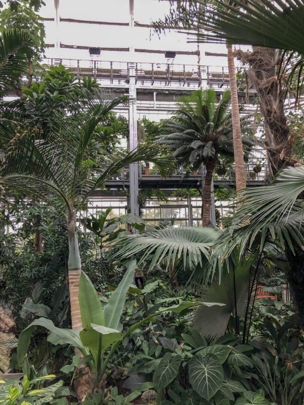 United States Botanic Garden Washington DC