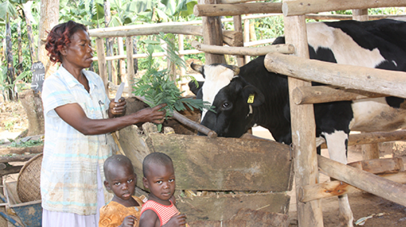 A woman and two children next to a cow.