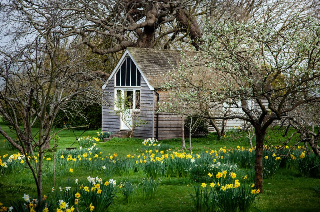 wooden shed in an orchard