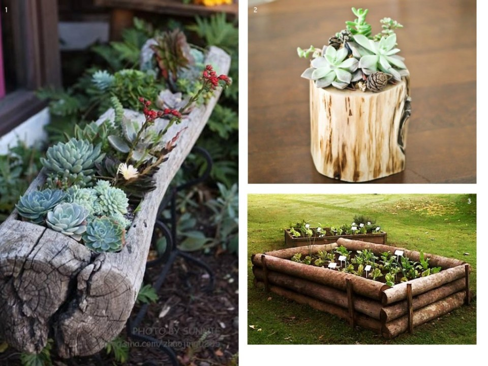 The forest at home: branches, trunks and crafts in wood