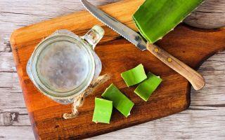 Aloe vera homemade gel with 100% natural ingredients.