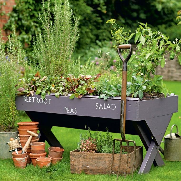 garden decoration plants