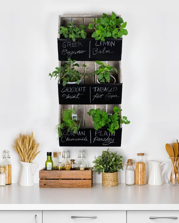 small garden herbs
