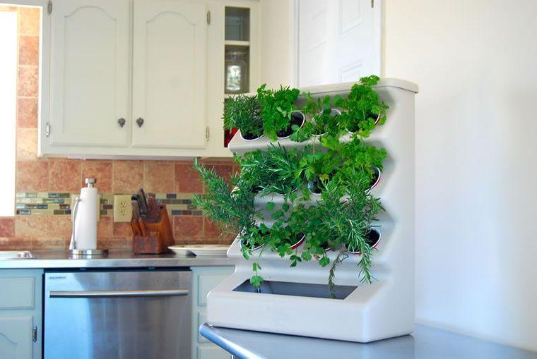 herbs ideas cultivation kitchen