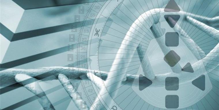 human design genetic information