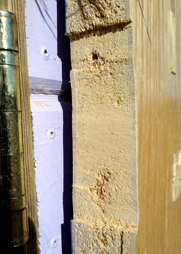 The edge of the door, which now has a mortise cut in it -- basically a recessed area that the flat part of the hinge fits into, so there's less of a gap between the door & the doorframe.