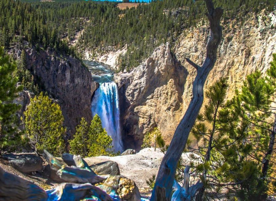 Explore 3 Days in Yellowstone National Park