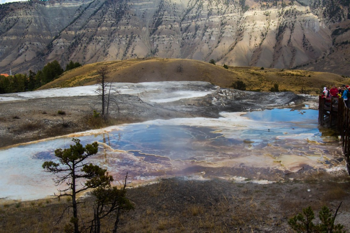 mammoth-hot-springs-yellowstone-np-3
