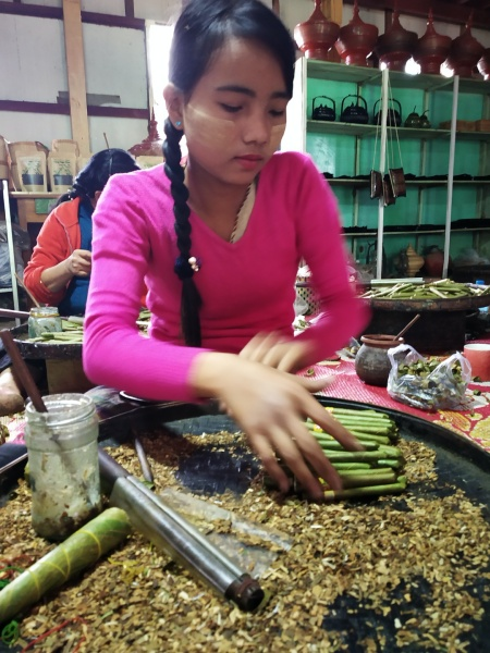 Cigar Making workshop, Inle Lake