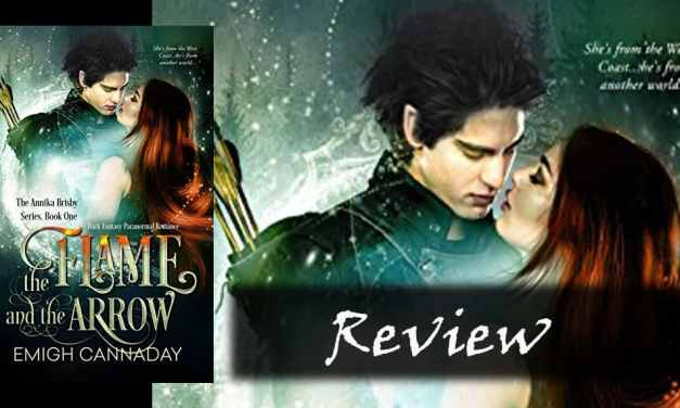 The Flame and the Arrow by Emigh Cannaday: Review and Summary