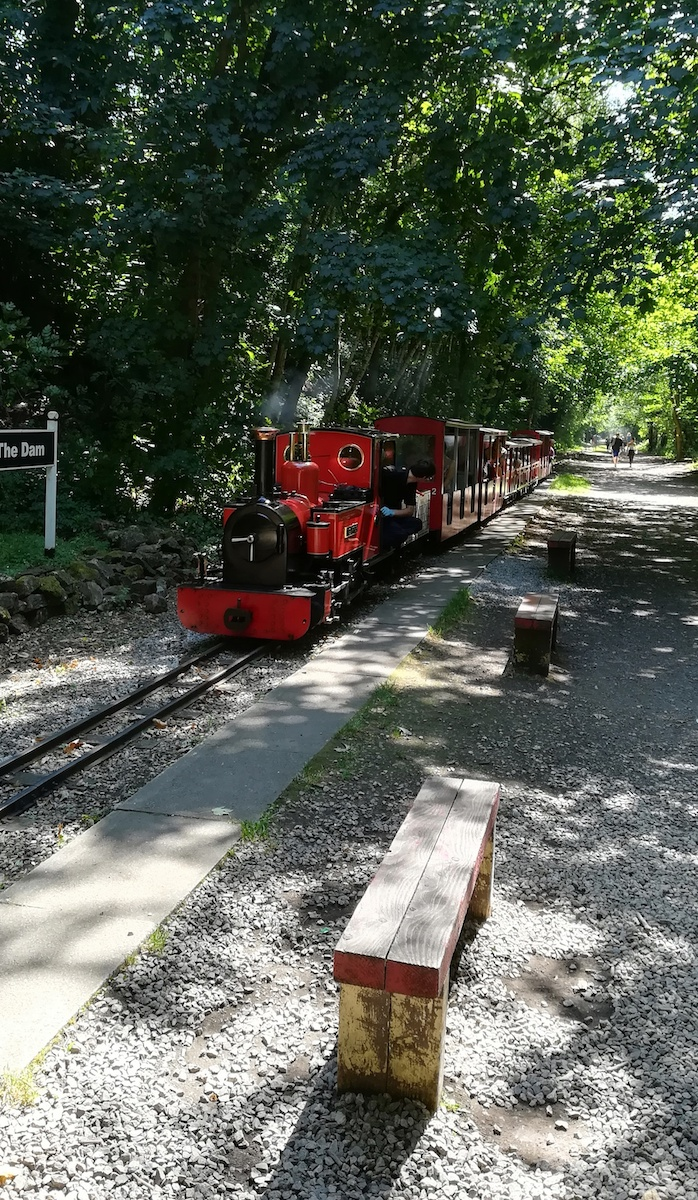 Here comes the train at Rudyard Lake.Photo by Chris Woodcock/The Vale Magazine