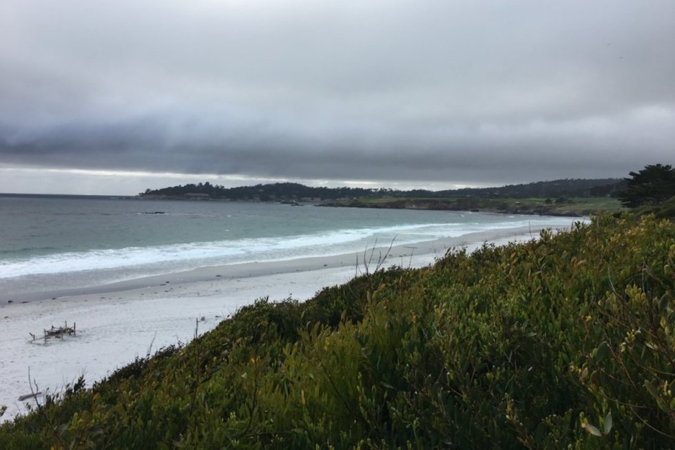 The white-sand beach of Carmel-by-the-Sea in California.