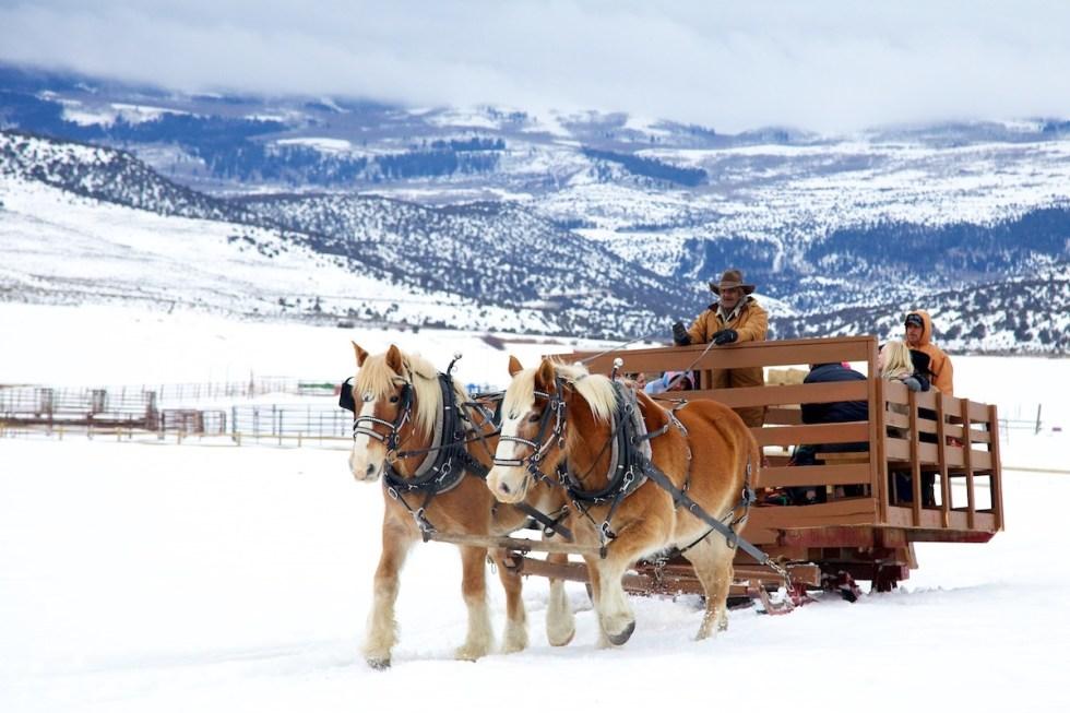 Horse-drawn sleigh ride at