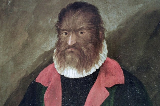 Portrait of Petrus Gonsalvus (1537 - 1618)