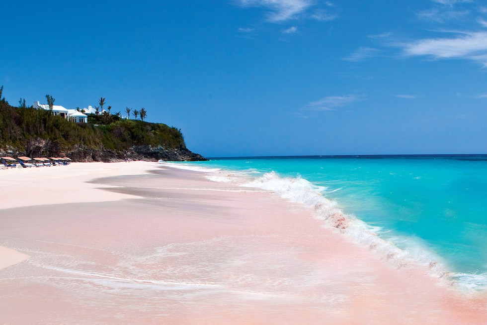 A pink sand beach at Harbour Island in the Bahamas