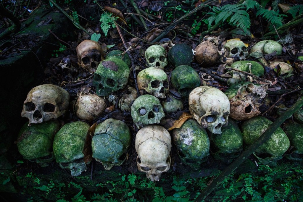 Human skulls decomposing above the ground in the village of Trunyan on the island of Bali