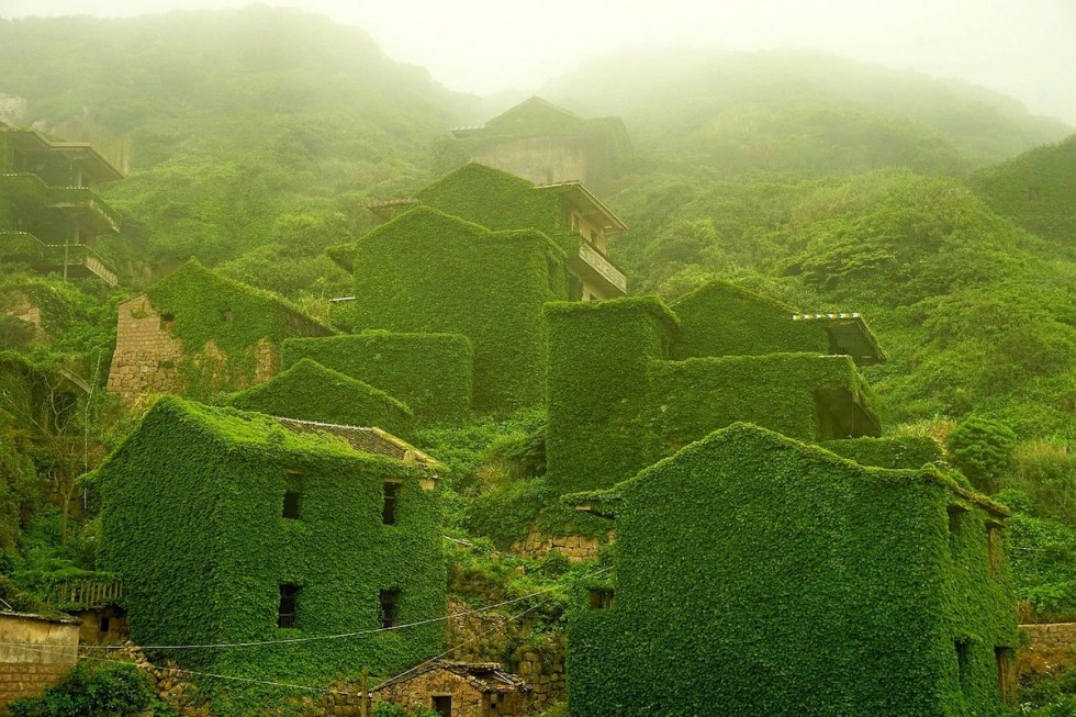 Abandoned fishing village in China swallowed by dense layers of ivy