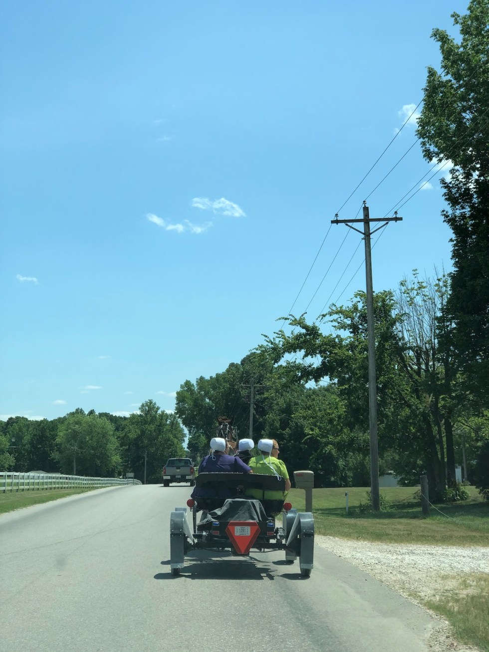 Amish horse-drawn buggy with female passengers