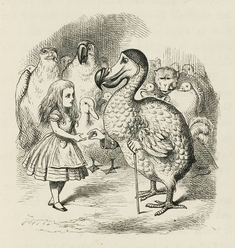 Alice and the Dodo John Tenniel