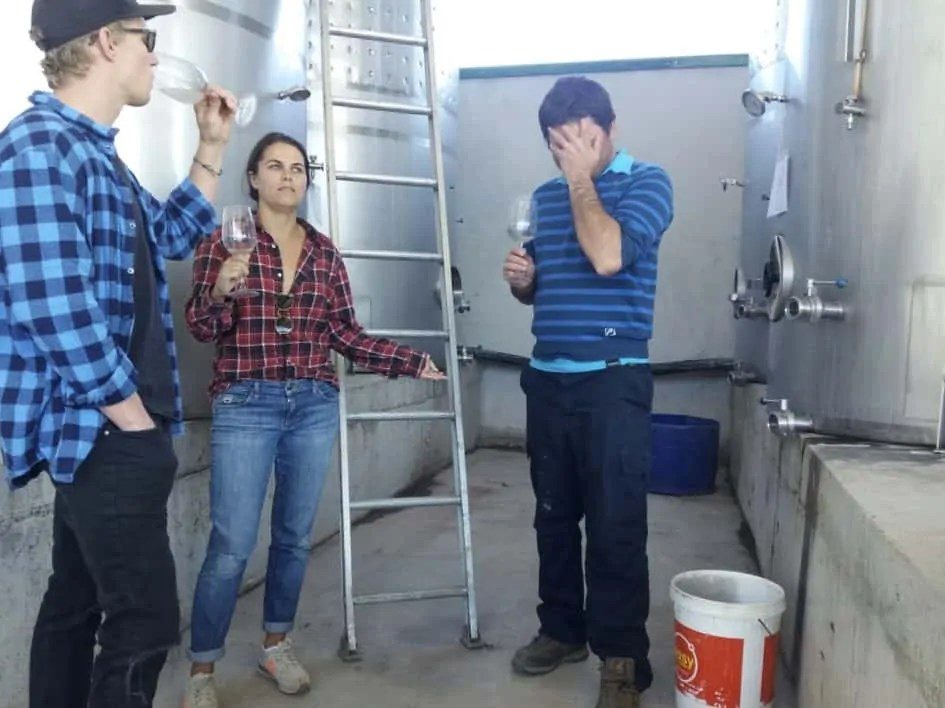 Touring the Vina Choapa, in one of the best wine regions in Chile