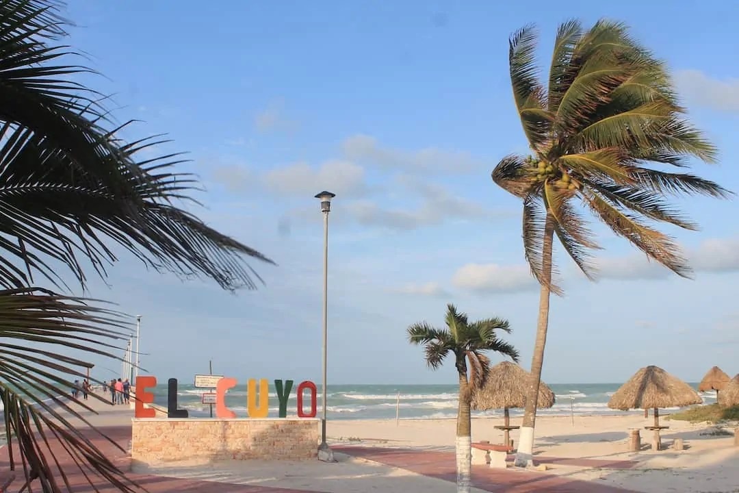 The El Cuyo sign at the beach with palm trees swaying in the wind