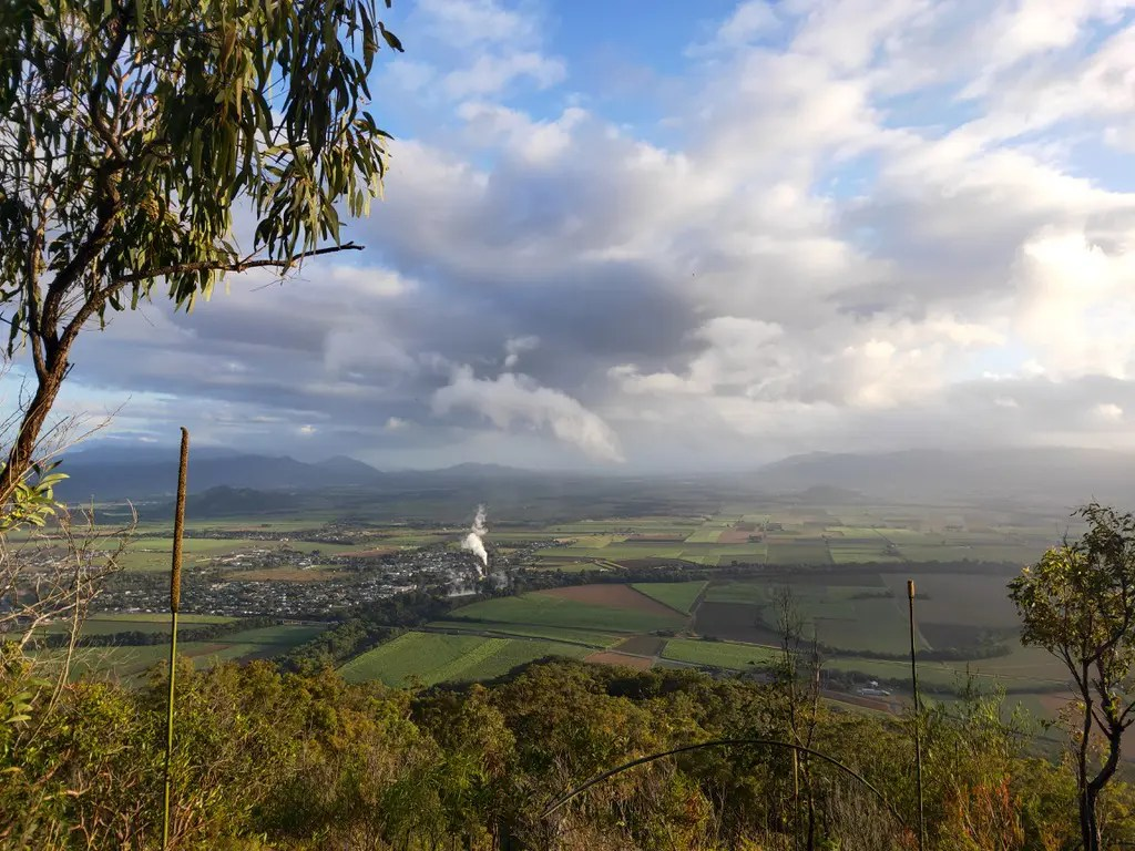 Overlooking the town of Gordonvale and sugar cane fields from the top of Walshs Pyramid