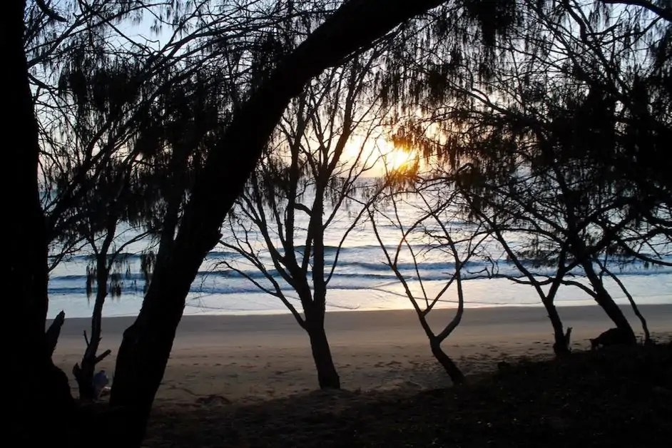 The beaches of Woodgate through the trees are some of the most beautiful in Queensland