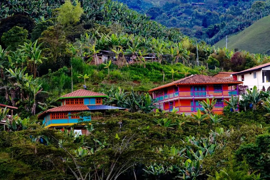 Colorful homes in Colombia's coffee region