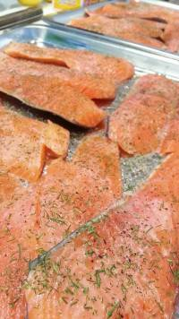 Salmon picnic 3