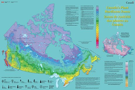 Canada hardiness zone
