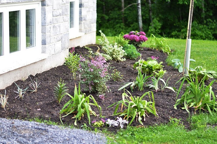 tips for planning and creating a new perennial flower bed tips for beautiful garden design
