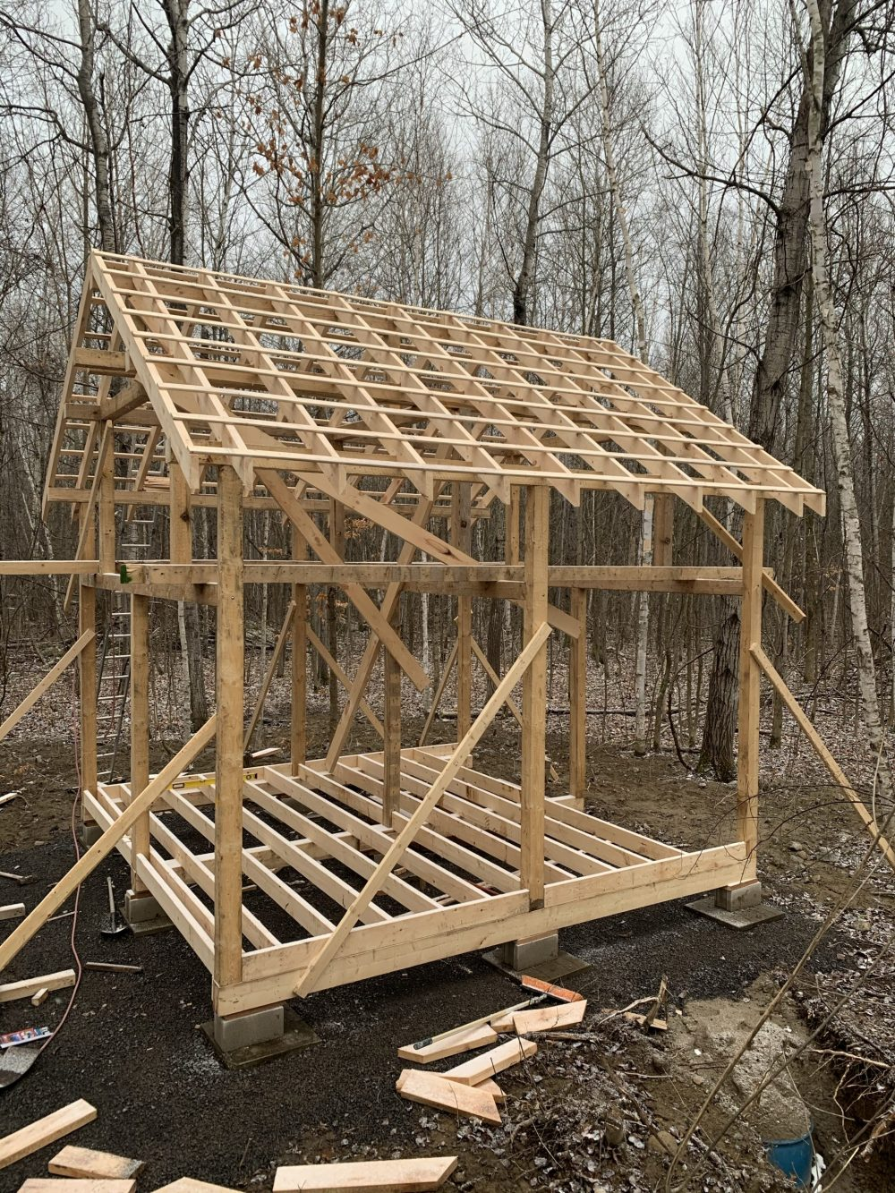 tiny cabin floor joists and roof rafters