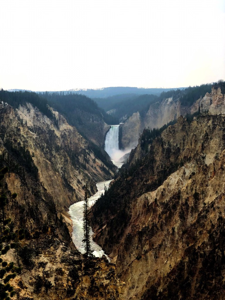 Grand Canyon of the Yellowstone river pic