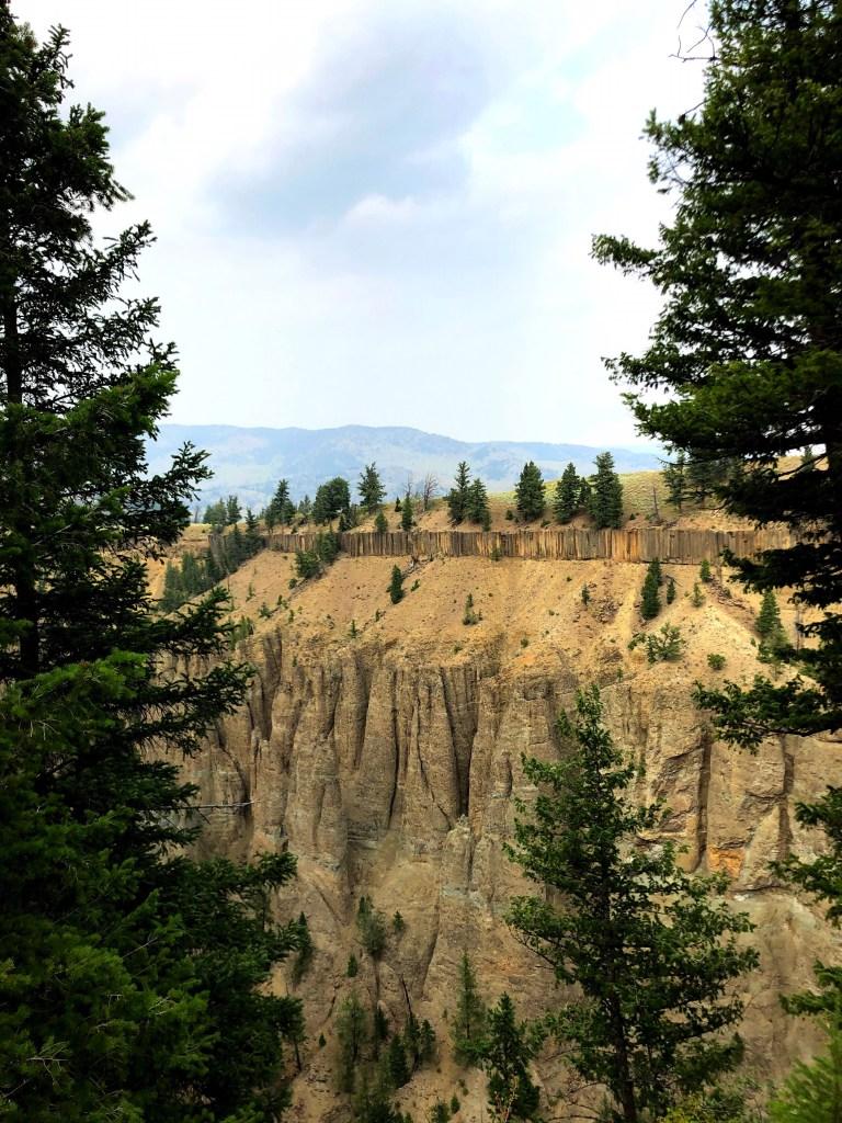 Lamar Valley yellowstone national park