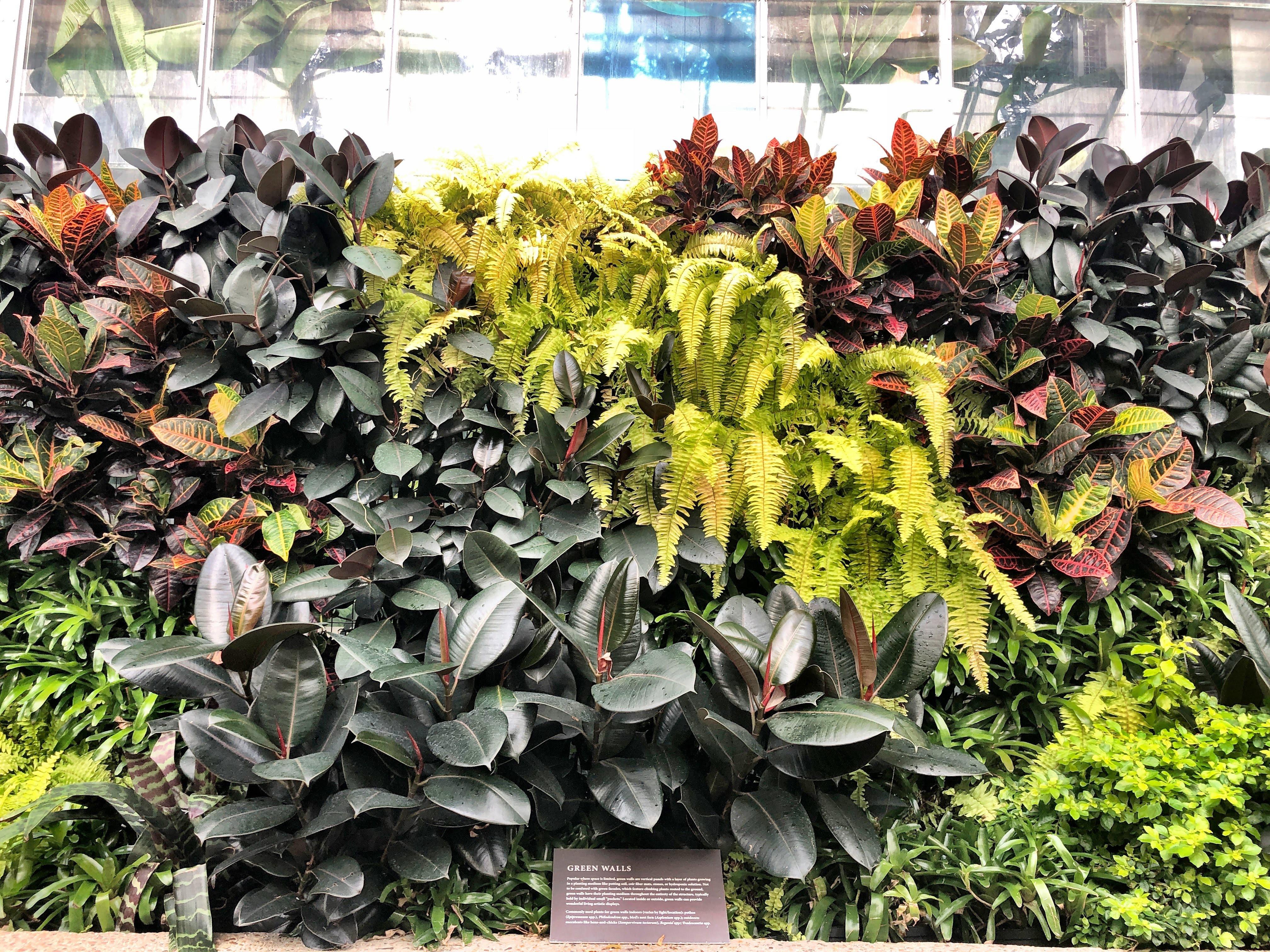Washington DC Botanical Gardens