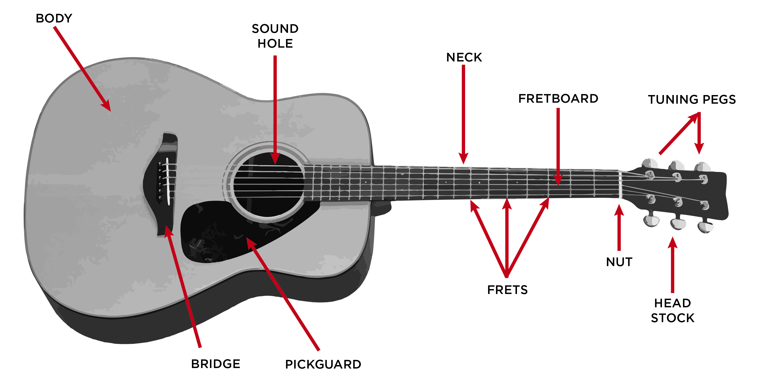 Acoustic Guitar Buyer's Guide – The Vault At Music & Arts