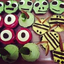 meg cupcakes