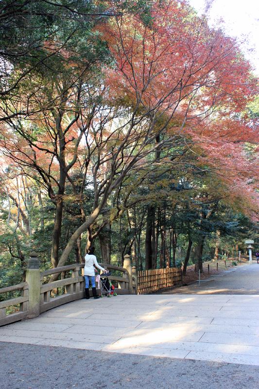 strollin temple blog