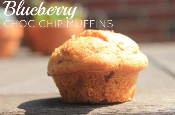 Blueberry Chocolate Chip Mini Muffins