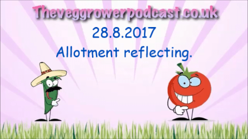 28.8.2017 video from the veg grower podcast. allotment reflecting