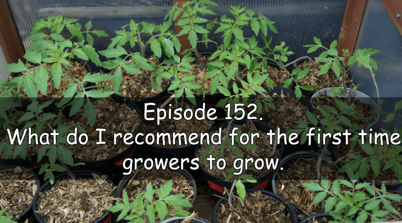 Join me in episode 152. What do i recommend for first time growers.