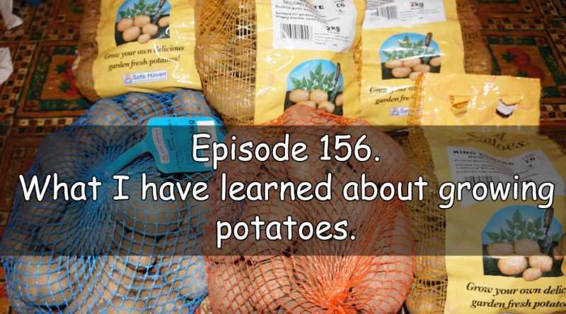 Join me in episode 156 where I share the latest on the plots and what I have learned about potatoes.