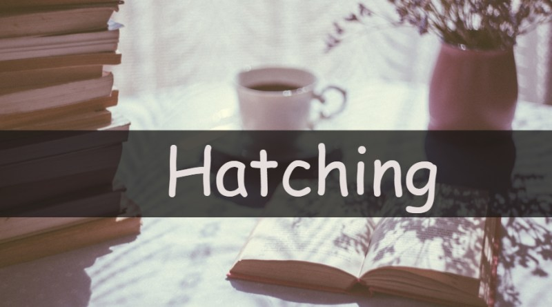 Each week I like to share my understanding of a horticultural word or term. This week I am looking at hatching.