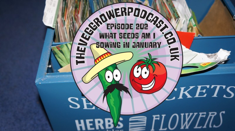 Join me in this weeks podcast where I discuss my seed sowing plans for January. I also share the latest on the allotment and vegetable patch.