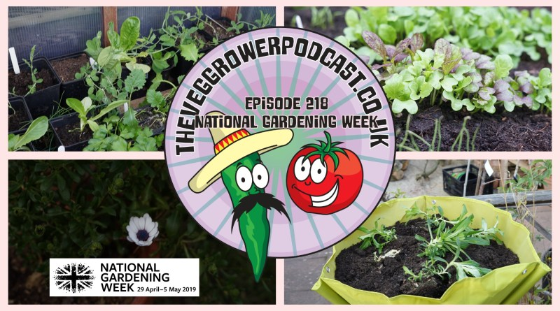 Join me in this week's podcast where I shall be celebrating national gardening week' edible britain and sharing why I love vegetable gardening so much. I also have the latest on the plots.