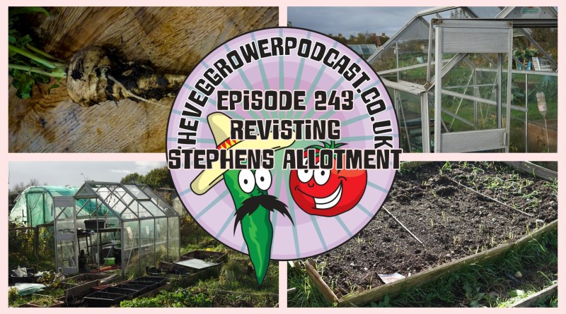 Join me in this week's podcast where I am revisiting Stephen's allotment. I also share the latest from my plots.