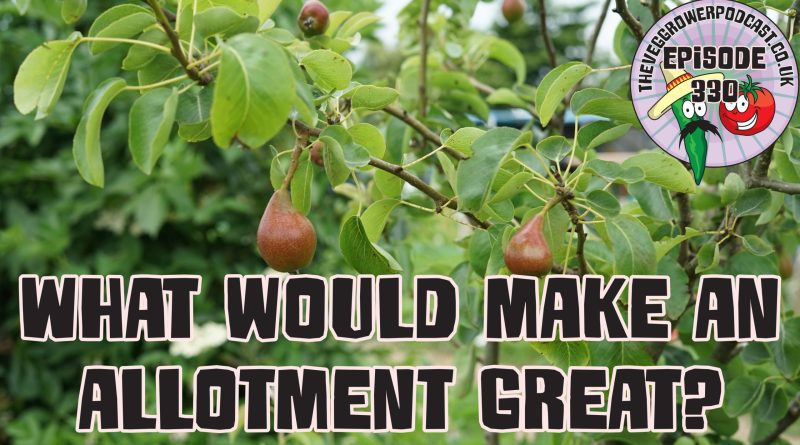 Join me in today's podcast where I am running a thought experiment and asking what features would make an allotment great? I also have the latest from the plots.